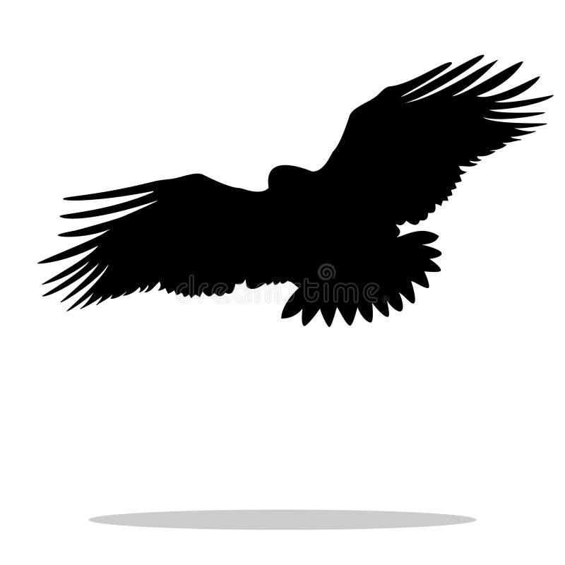 老鹰鹰鹫鸟黑色剪影动物 向量例证