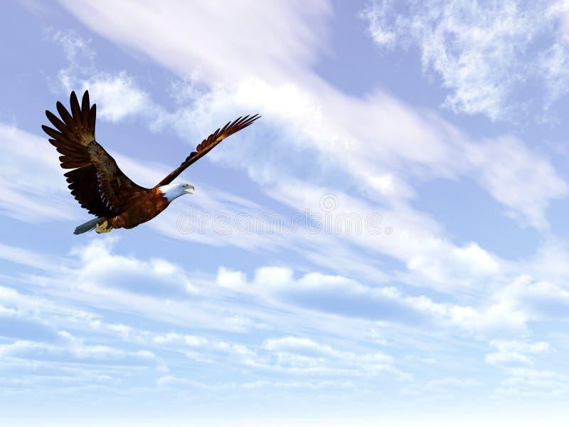老鹰 向量例证