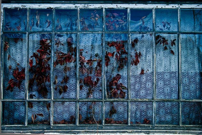 Download 一个老窗口 库存照片. 图片 包括有 浪费, 葡萄酒, 背包, 框架, 详细资料, 视窗, 玻璃 - 30328730