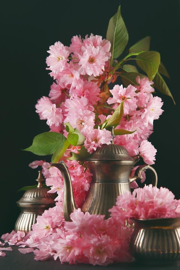 老,用樱花装饰的葡萄酒古色古香的上等咖啡咖啡罐开花,黑暗的喜怒无常的射击 免版税库存图片