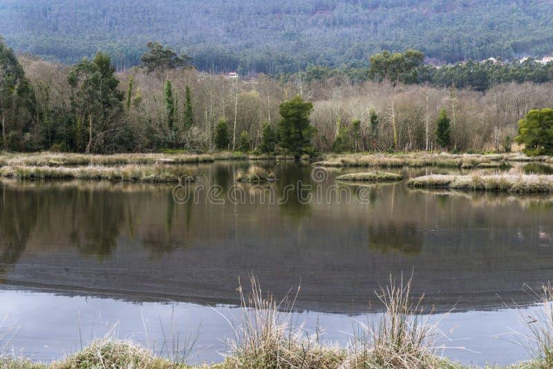 老水手沼泽在蓬特韦德拉西班牙 免版税库存照片