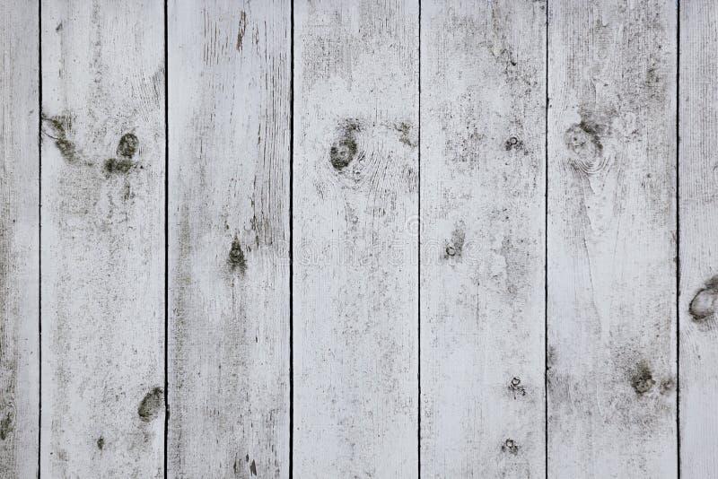 老轻的委员会 木纹理 抽象背景异教徒青绿 免版税库存照片