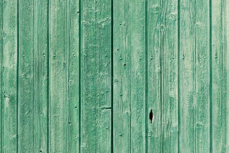 老绿色被绘的被风化的木板条 免版税库存照片