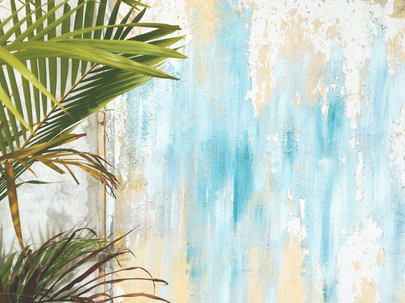 老破裂的古色古香的葡萄酒历史的议院墙壁和棕榈树叶子分支 热带异乎寻常的泰国夏天游客旅行 免版税库存图片
