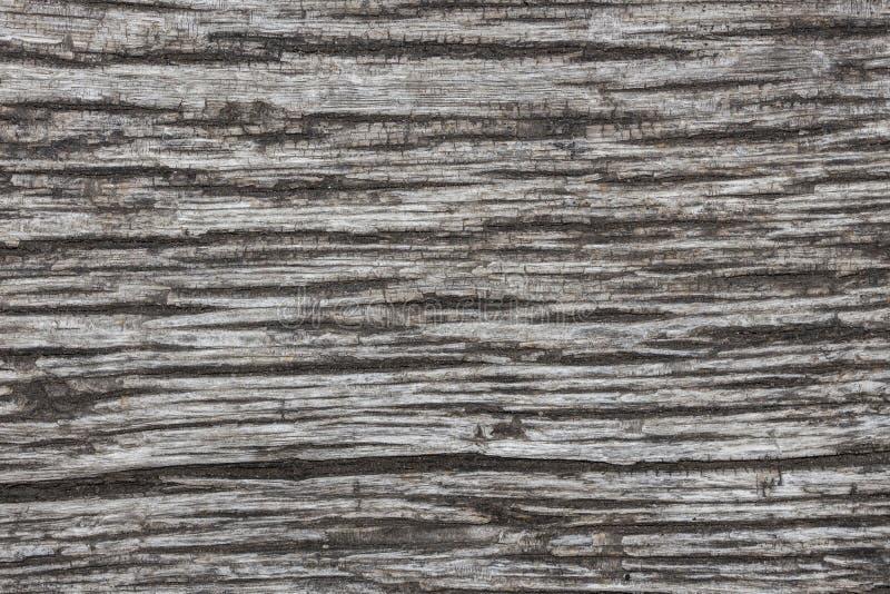 老破裂的木头的纹理 免版税库存照片