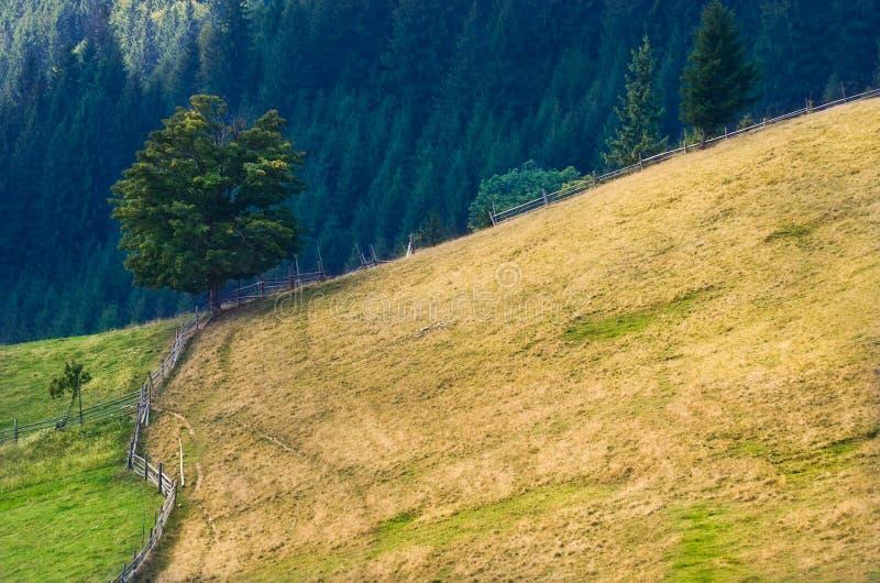 老farmer';s木房子在大象山站立在干草堆附近反对山峰背景  图库摄影
