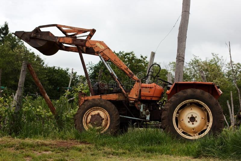 老Frontloader拖拉机在葡萄园里 免版税库存照片