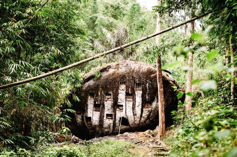 老torajan掩埋处在博里,塔娜Toraja 有在一个巨大的岩石安置的棺材的公墓 Rantapao,苏拉威西岛,印度尼西亚 免版税库存图片