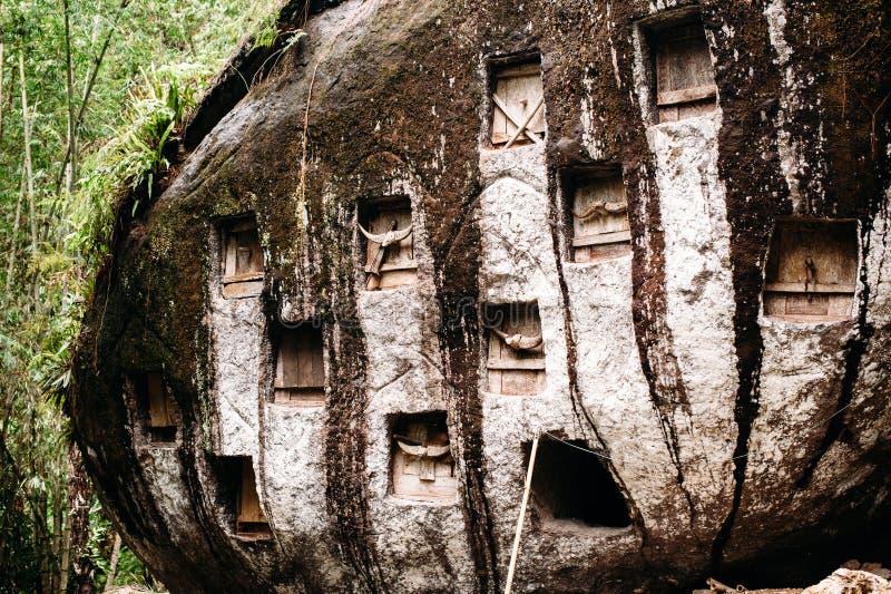 老torajan掩埋处在博里,塔娜Toraja 有在一块巨大的石头安置的棺材的公墓 印度尼西亚,苏拉威西岛, Rantepao 库存图片