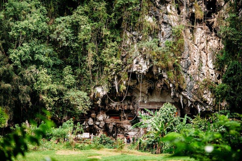 老torajan掩埋处在Londa,塔娜Toraja 有在洞安置的棺材的公墓 Rantapao,苏拉威西岛,印度尼西亚 免版税库存图片