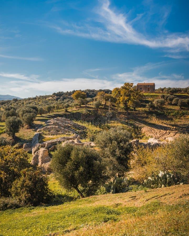 考古学公园` Scolacium `的风景 免版税库存图片