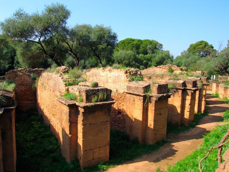 考古学罗马站点tipasa 免版税图库摄影