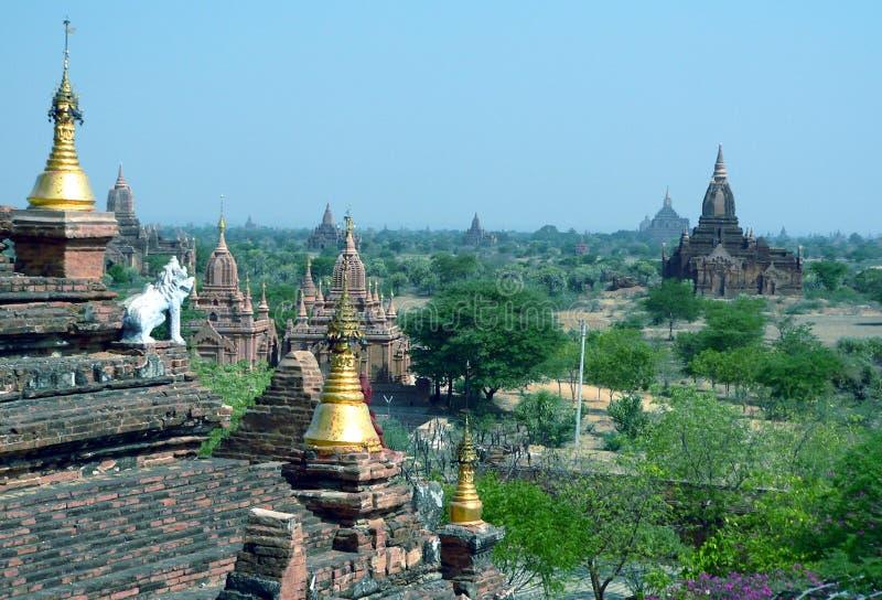 考古学bagan缅甸缅甸区域 图库摄影