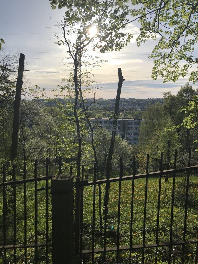 考纳斯立陶宛 库存照片