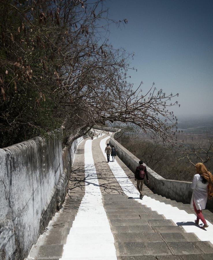 耆那教的山 库存照片