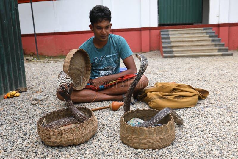 耍蛇者在斯里兰卡 免版税库存图片