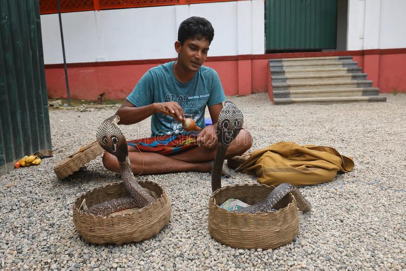 耍蛇者在斯里兰卡 免版税库存照片