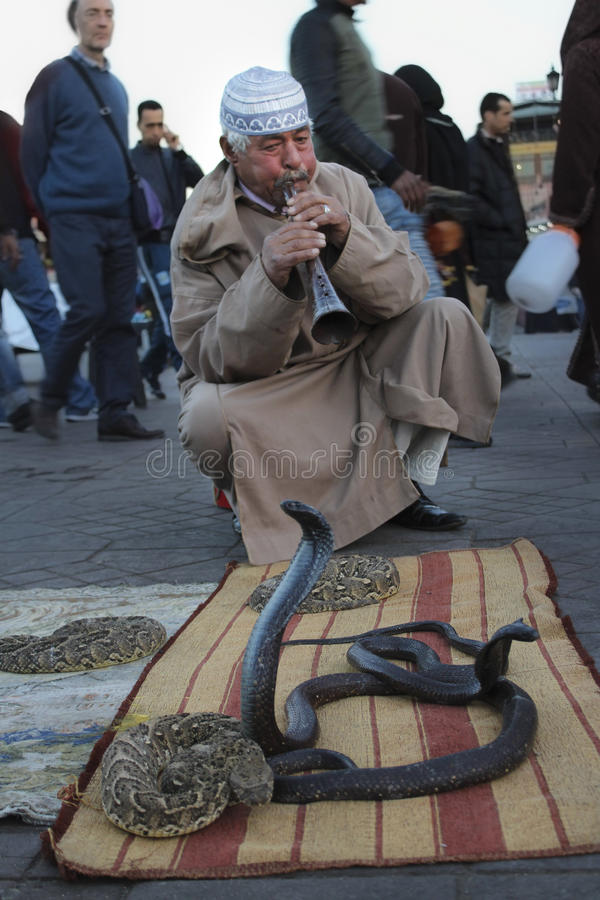 耍蛇者在马拉喀什,摩洛哥 库存图片