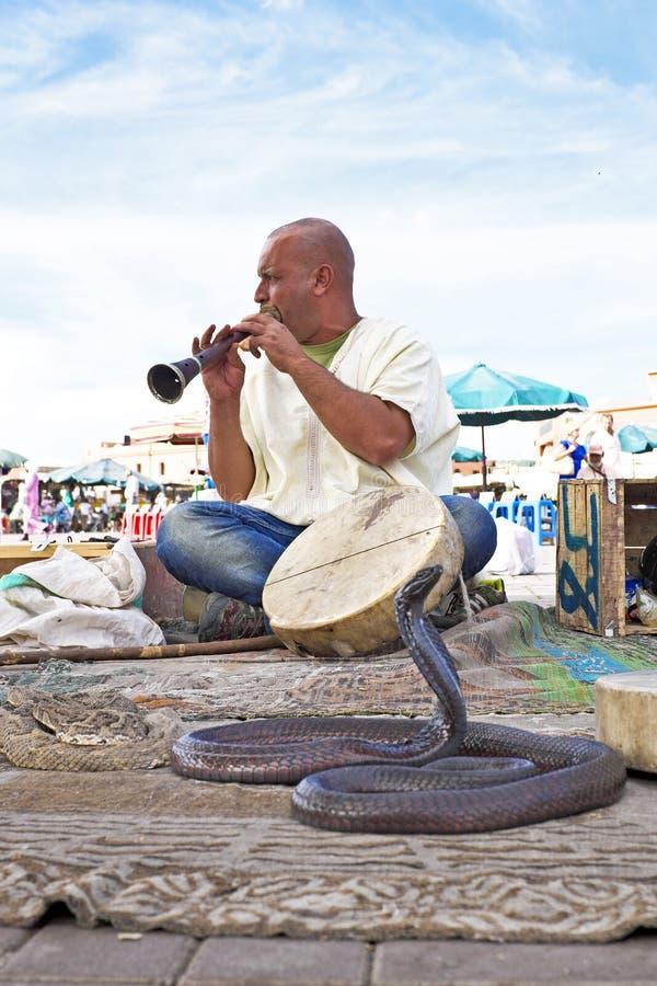 耍蛇者眼镜蛇跳舞在马拉喀什摩洛哥 免版税图库摄影