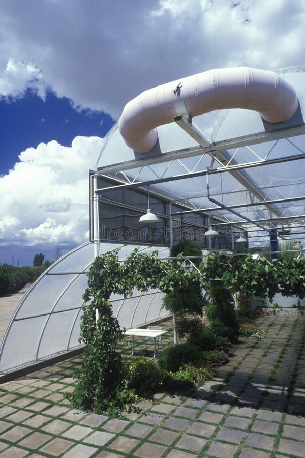 水耕种田在亚利桑那大学环境研究实验室在图森, AZ 库存图片
