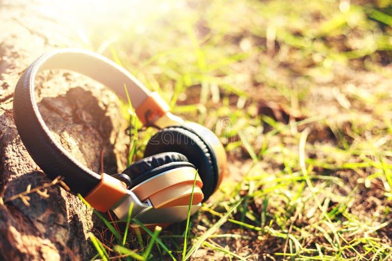 耳机在地面上并且临近大树 免版税库存图片