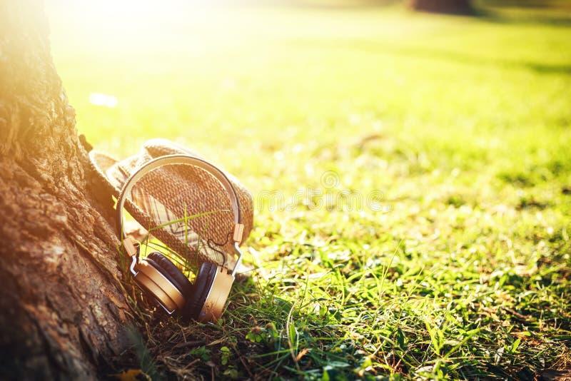 耳机在地面上并且临近大树 免版税库存照片
