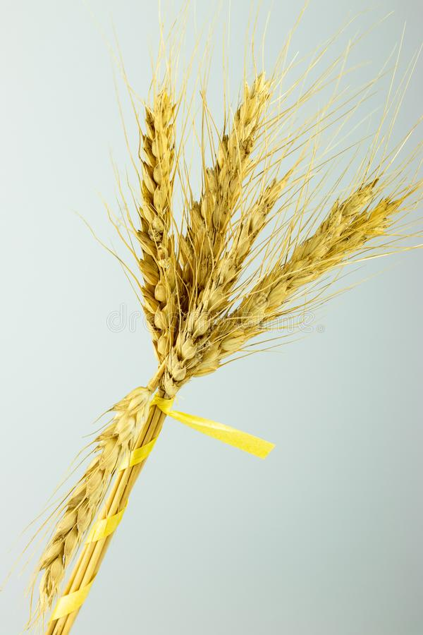 耳环花束有一条黄色丝带的 库存图片