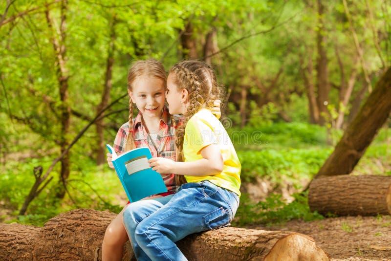 耳语两个的朋友坐在公园的秘密 免版税库存图片