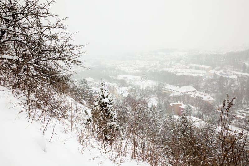 耶拿冬天视图 免版税库存照片