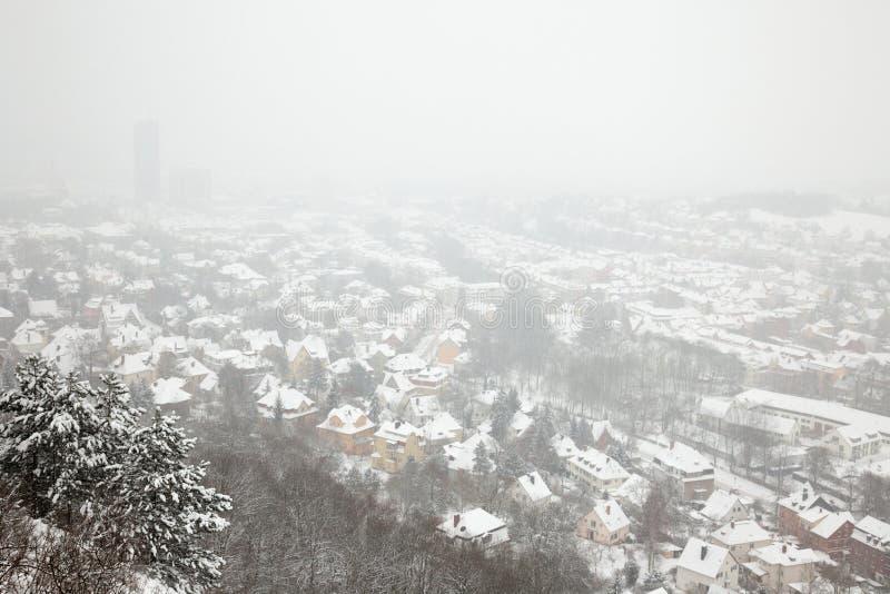 耶拿冬天视图 免版税库存图片