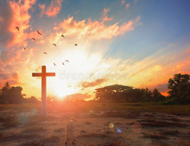 耶稣基督概念的复活:在耶稣基督前面十字架的上帝羊羔日出背景的 免版税图库摄影