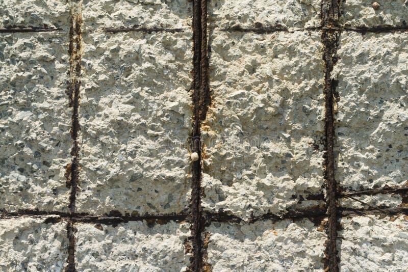 耶老岛的混凝土墙纹理 库存图片