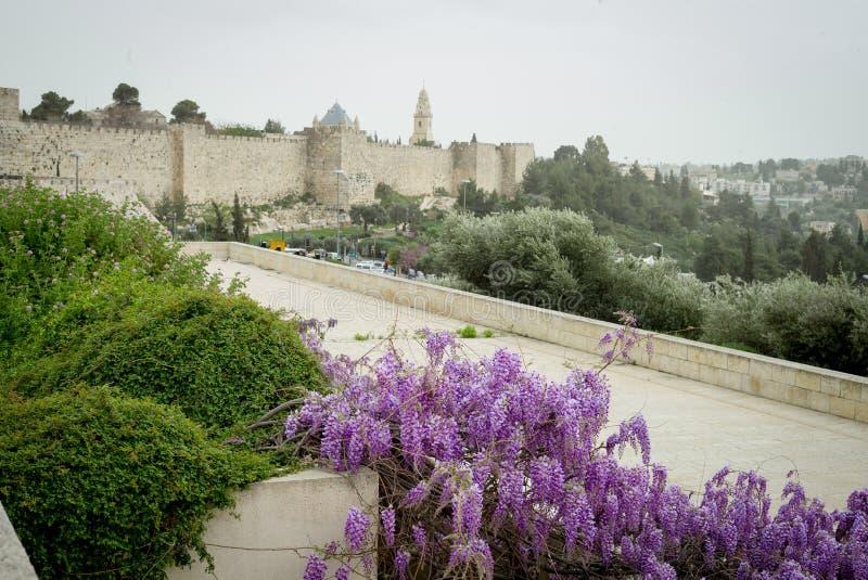 耶路撒冷全景屋顶视图 免版税图库摄影