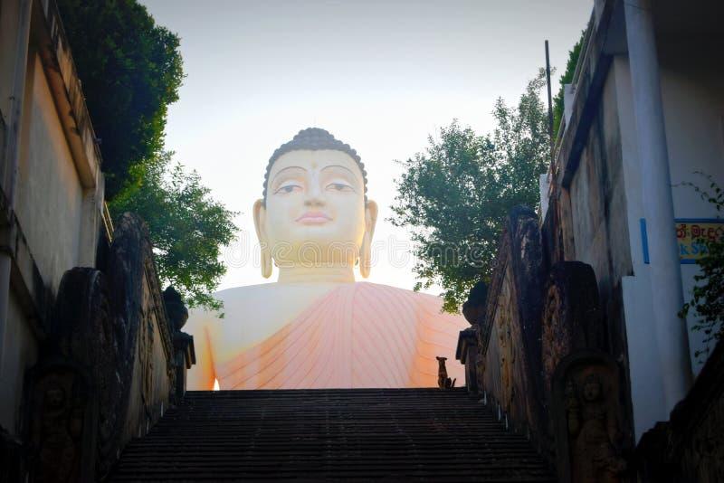 耸立的菩萨俯视的楼梯看法在Aluthgama,在本托特附近,斯里兰卡 图库摄影