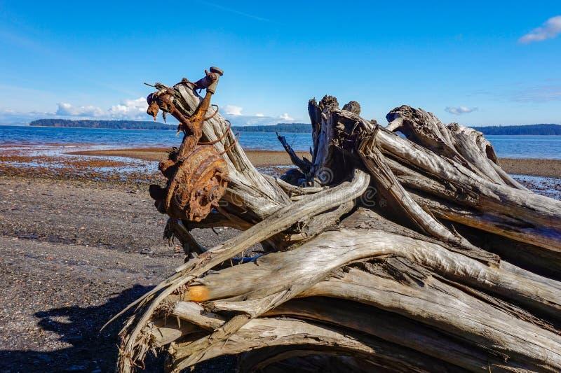 联合海湾煤炭小山温哥华岛,不列颠哥伦比亚省, Canad 免版税图库摄影