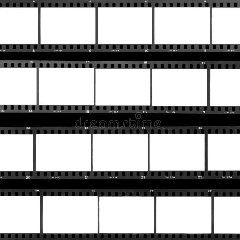 联络页空白胶卷画面 免版税图库摄影