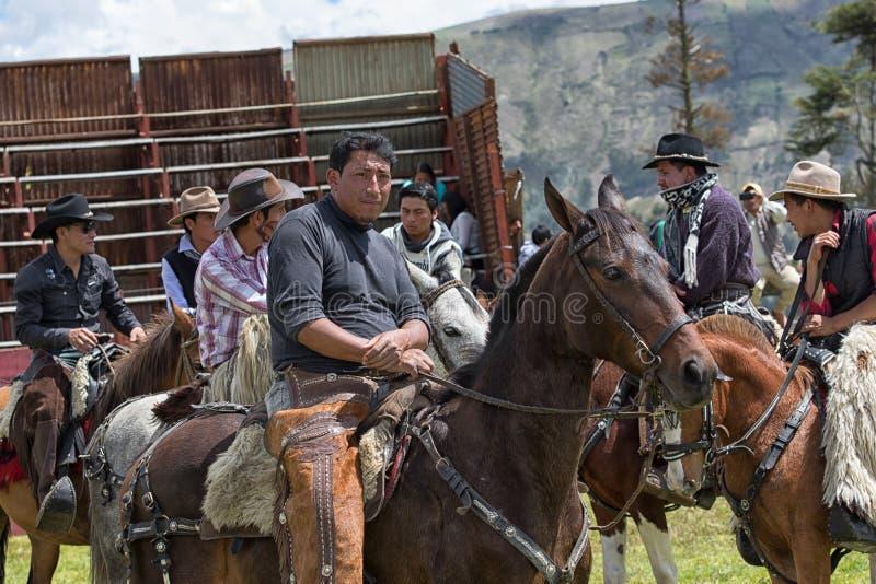 聚集在圈地圆环的牛仔在厄瓜多尔 免版税库存图片