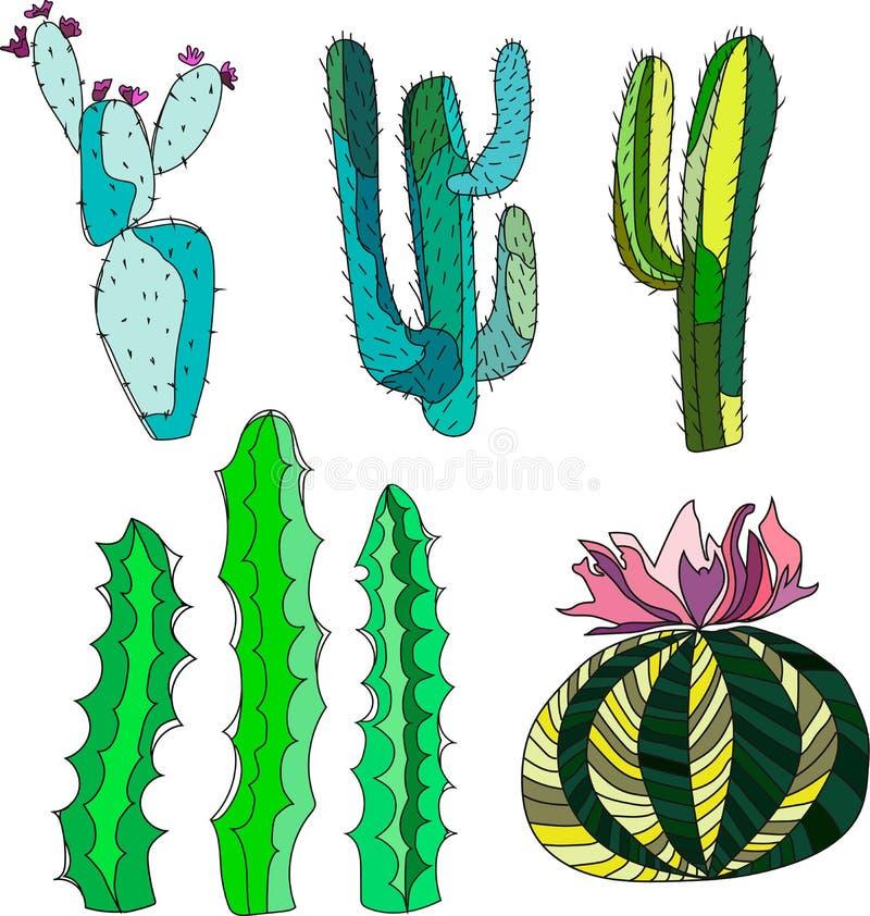 聪慧的可爱的老练仙人掌油漆的墨西哥人夏威夷热带花卉草本夏天绿色套喜欢儿童传染媒介 皇族释放例证