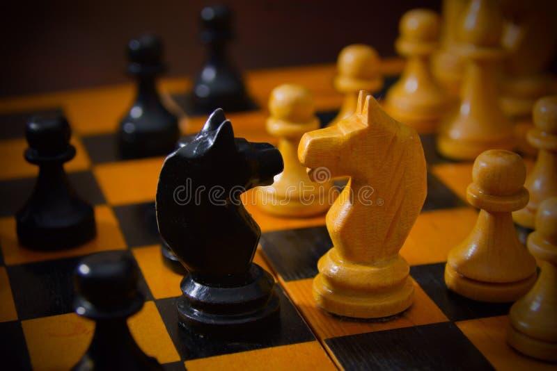 聪明的棋-棋 图库摄影