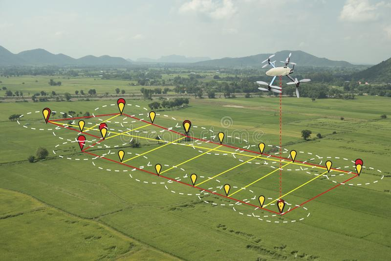 聪明的种田的概念,寄生虫用途在农业机智的技术 库存图片