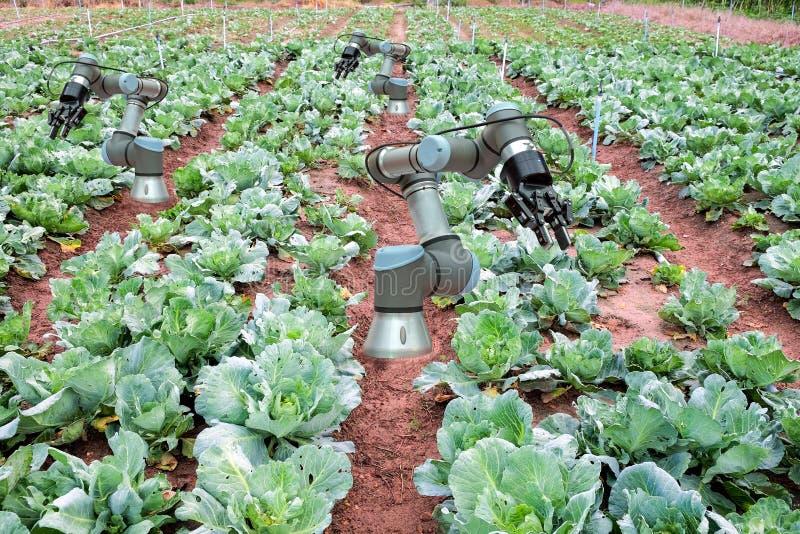 聪明种田的4 0和产业4 0,创新概念想法 免版税库存照片