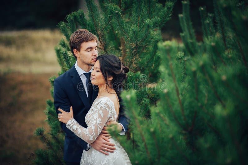 肉欲的已婚夫妇,拥抱在老slavi前面的华伦泰 库存照片
