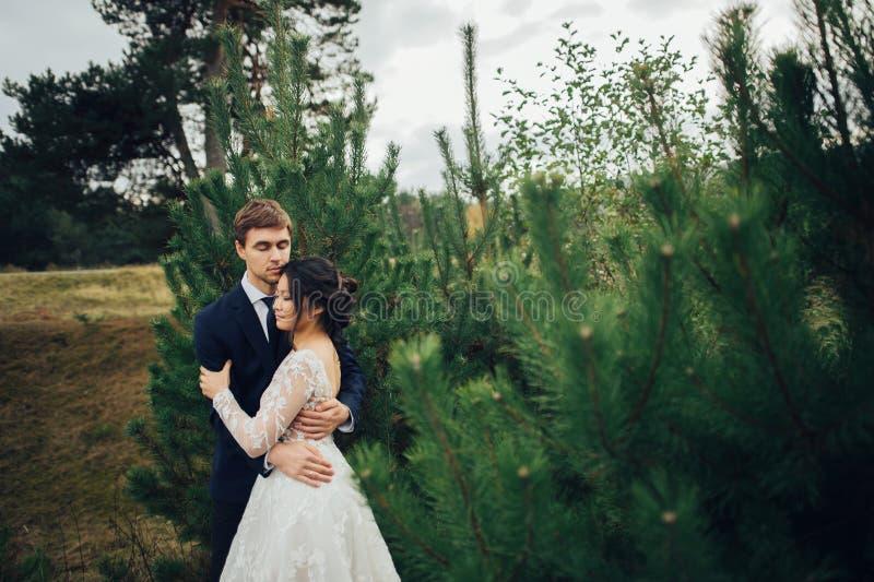 肉欲的已婚夫妇,拥抱在老slavi前面的华伦泰 免版税库存图片