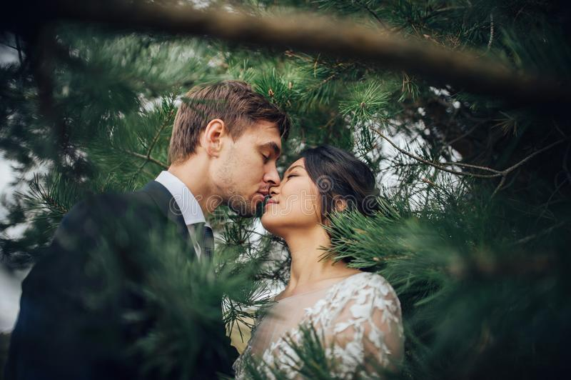 肉欲的已婚夫妇,拥抱在老slavi前面的华伦泰 库存图片