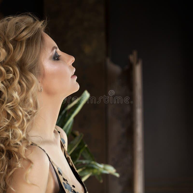 肉欲的白肤金发的时装模特儿妇女在家 免版税库存图片