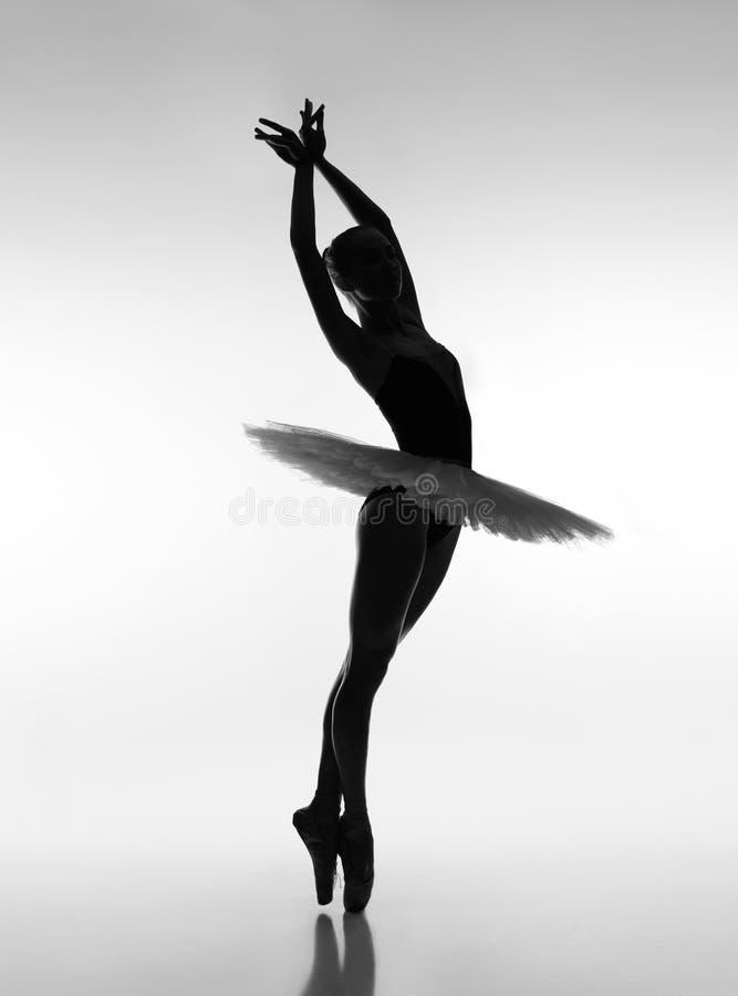 肉欲的芭蕾舞女演员在树荫下 库存图片