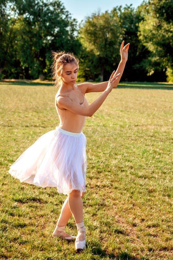 肉欲的芭蕾舞女演员本质上 库存图片