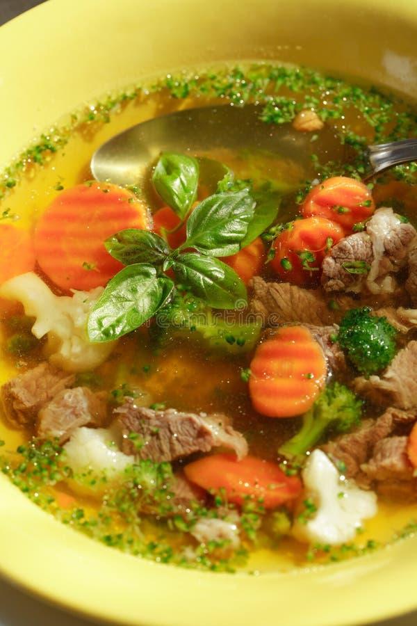 肉汤蔬菜 免版税库存图片