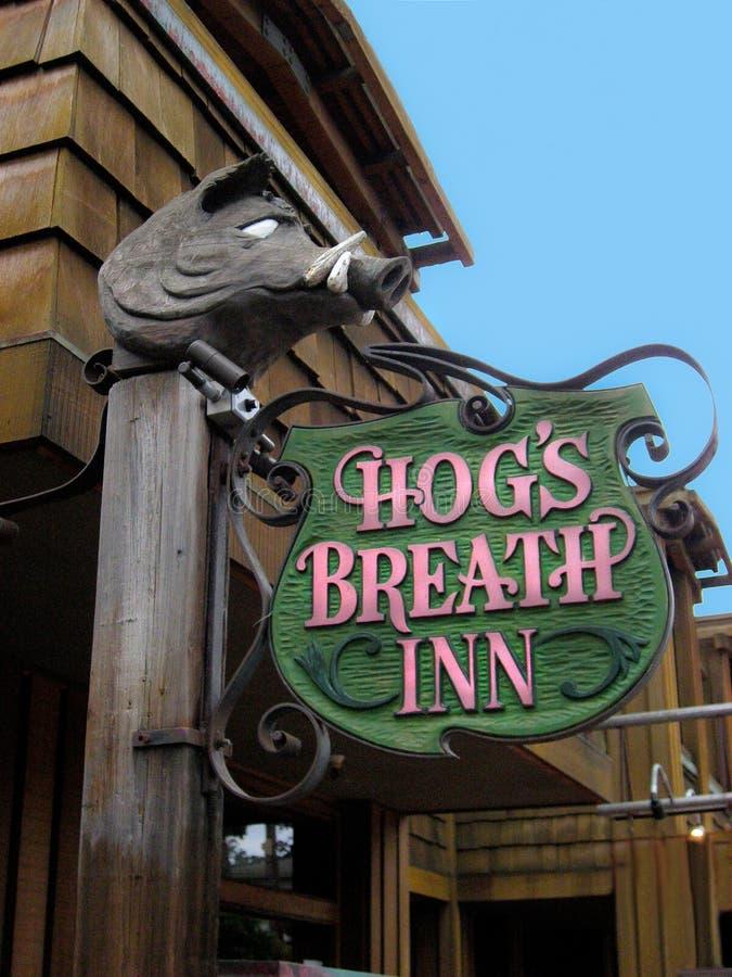肉猪的呼吸旅馆标志加米奥加利福尼亚 免版税图库摄影
