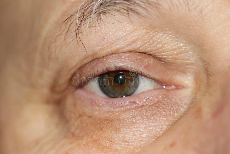 肉眼特写镜头,健康眼睛 图库摄影